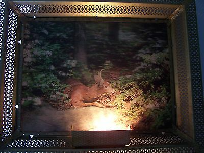 Illuminated framed Lentograph Picture Victor Anderson 3d Studios Deer in Woods