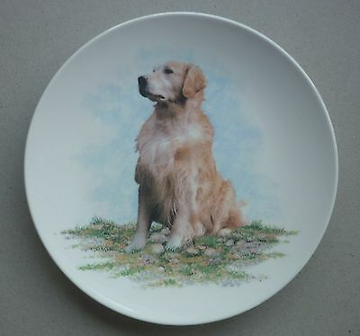 Golden Retriever Porcelain Dog Plate 6.7 Inch By Paddock House Collection