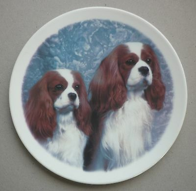 "Cavalier King Charles Spaniel Fine China Dog Plate 8.2"" Paddock House Collection"