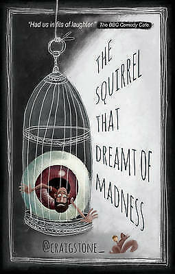 The Squirrel That Dreamt of Madness by Craig Stone (Paperback, 2016)