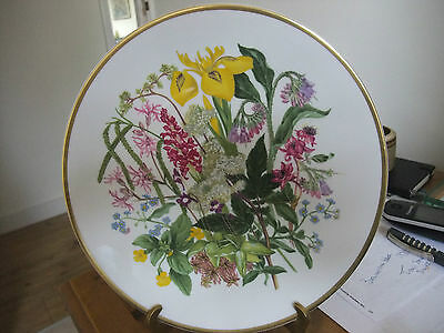 Caverswall Collectors Plate Wildflowers Marshland & Fen Limited Edition