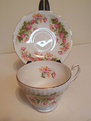 Mint Queens England Wild Flowers pattern Cup and Saucer Set
