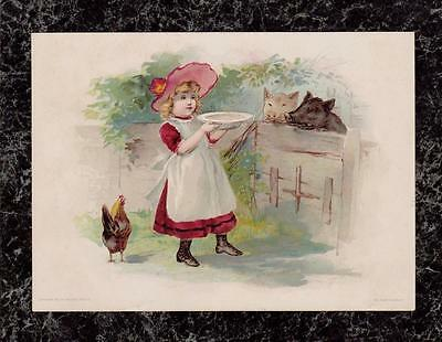 1894 Girl Feeds Pigs Lion Coffee Large Trade Card Woolson Spice Knife Offer Back
