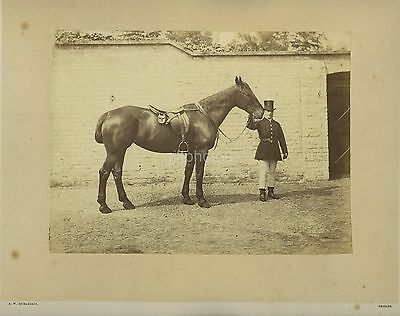 Large Photo Of A Man Holding His Horse By Richardson Of Reigate c1870s