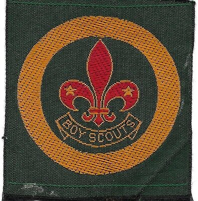 South African Scout Badge (Scan 519)