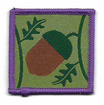 Scottish Young Leader Scout Badge (Scan 530)