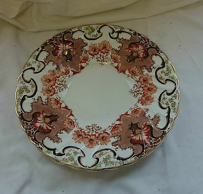 STUNNING Vintage ANTIQUE 19th CENTURY Hand Painted FLORAL CHINA PLATE 23cm