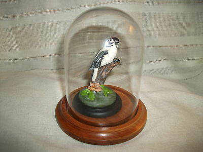 John Mullican Downy woodpecker figure 1984