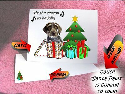 30 German Wirehaired Pointer Christmas cards envelope 60 pieces gift box design