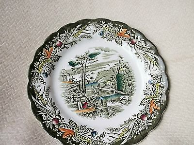 Vintage Hand Coloured Scallop Rim Green Transfer Side Plate Ridgway Rideau Canal