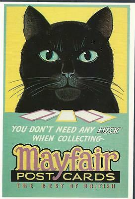 Postcard The Mayfair cat collecting luck British GB