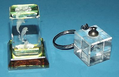 """Etched Dolphins in 3D Glass Cube Mini Paper Weight 1.5""""x1"""" & Dolphin Key Chain"""