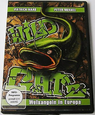 DVD Wild Cats - Made in Eurpa - Patrick Haas + Peter Merkel - NEU