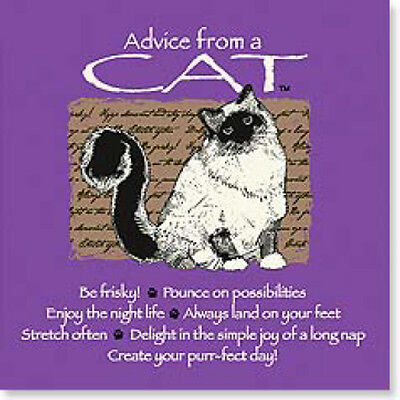 """LEANIN TREE """"Advice From A Cat"""" Magnet #26342~Be Frisky~Create Your Purrfect Day"""