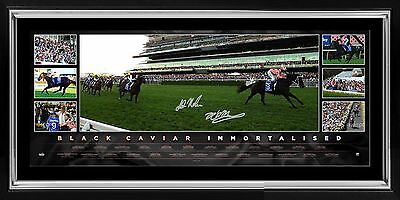 Black Caviar Signed & Framed Limited Edition Last Start Retirement Panoramic