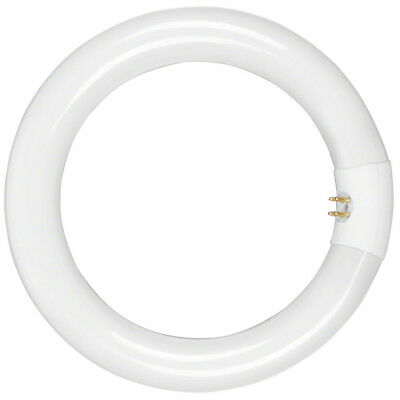 walimex Lamp for Beauty Ring Light 90W, inner replacement lamp, 22W