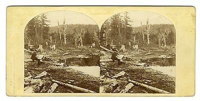 William England, London Stereoscopic Co.-Artist at Work, Catskill Mountains