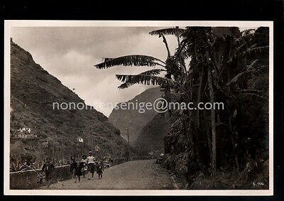 Madeira Interior Children On Country Road C M & S Real Photo Postcard E20C - 20