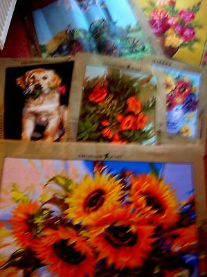 Tapestry Canvassses 12 in total New Assorted design,Makes & Sizes
