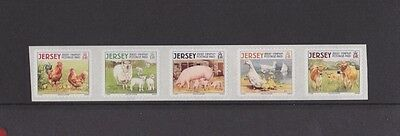 Jersey, 26th Aug, 2008, Farm animals, set of 5, mint.