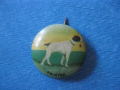 VTG Pinback Button Pin Celluloid POINTER Hunting Dog ORIGINAL