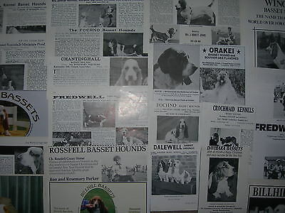 Basset Hound kennel breed clippings