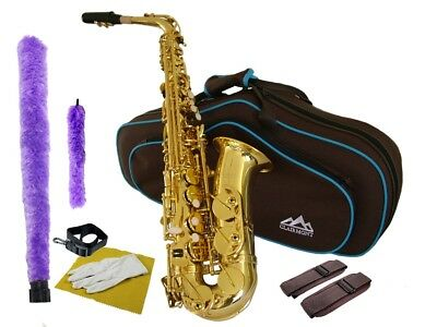 Intermediate ALTO SAXOPHONE Plays very well  with Fabulous Case + Gift!