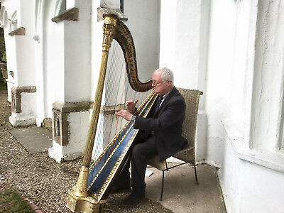 Harp Music Cd - Light Classical Music, Well Known Poplar Pieces In Restful Style