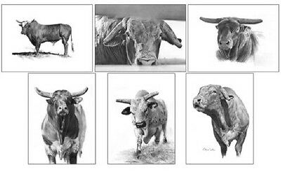 PBR Bull Series II Notecards Set of 6 Different Images~ROBYN COOK PENCIL ARTIST~