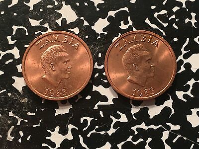 1983 Zambia 2 Ngwee (2 Available) High Grade! Beautiful! (1 Coin Only)