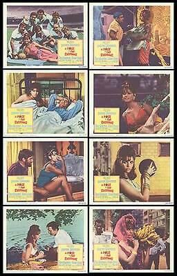 A ROSE FOR EVERYONE 1967 lobby card set CLAUDIA CARDINALE 11x14 movie posters