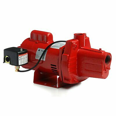 Red Lion RJS-50-PREM .5HP Cast Iron Thermoplastic Shallow Well Jet Pump | 602206