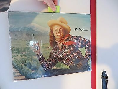 Marilyn Monroe  advertising for Mission Soda in orange grove and mountains rare