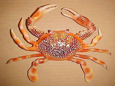 "6"" CRAB Wall Decor Tropical Fish Bath Beach Nautical Aquatic Ocean Spa Aquarium"