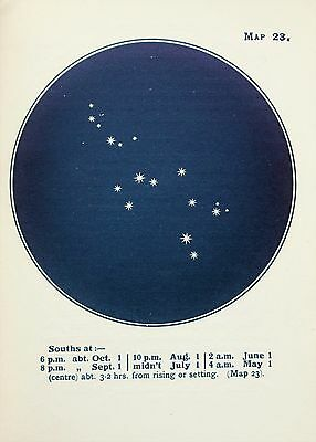Antique Print Star Chart - Constellations - Celestial - Astrology - Astronomy 23