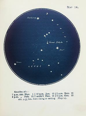 Antique Print Star Chart - Constellations - Celestial - Astrology - Astronomy 14