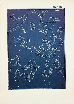 Antique Print Star Chart - Constellations - Celestial - Astrology - Astronomy 28