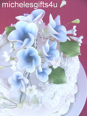 Gum Paste White & Blue Frangipani Hawaiian Sugar Cake Flowers