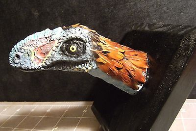Reproduction Dinosaur Head Mount Bambiraptor Resin Cast  Wall Mount Feathered