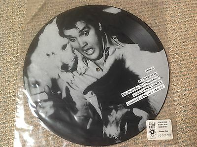 """Elvis Presley A Tribute by Nick Sample - Why Don't You Play Hound - 12"""" Pic disc"""