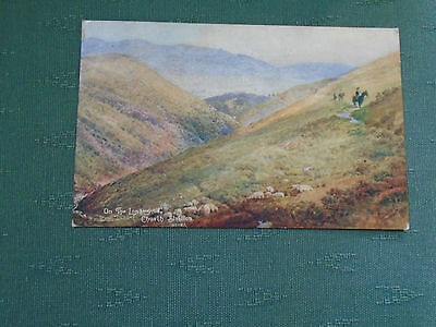 1907 On The Longmynd Church Stretton - Shropshire Postcard