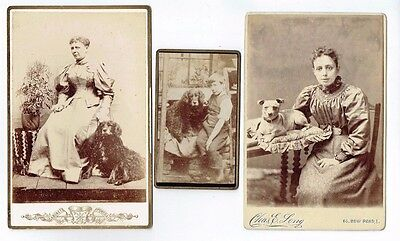 Old Cabinet Photographs & A Cdv Photo Pet Dogs & Owners Antique 1880S