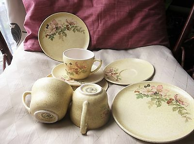 Retro New Devon Pottery Speckled Rosehip Design 2 X Trios & Extra Cup & Plate
