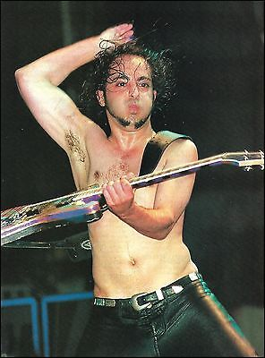 System of a Down Daron Malakian Ibanez Iceman Guitar 8 x 11 pinup photo print