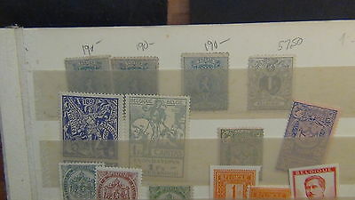 Belgium stamp collection / accumulation on various pages and stock, etc