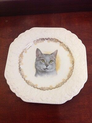 Vintage Lord Nelson Pottery Rack Plate Grey Cat Head