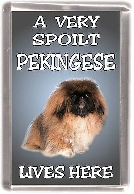 "Pekingese Dog Fridge Magnet  ""A VERY SPOILT PEKINGESE LIVES HERE"" by Starprint"