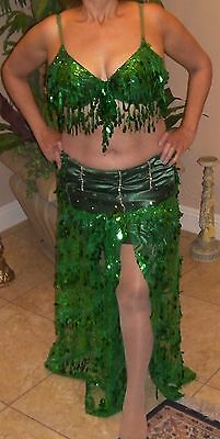 Professional Egyptian Green Mesh Lace Sequins, Beads & Satin Belly Dance Costume