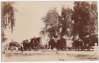India Post Card-ON THE ROAD TO AFGHANISTAN,Elephants pulling heavily laden carts