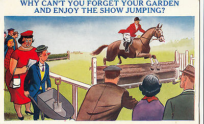 Horse  + Show Jumping Humour